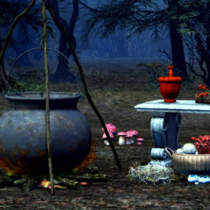 A witch's cauldron in the woods